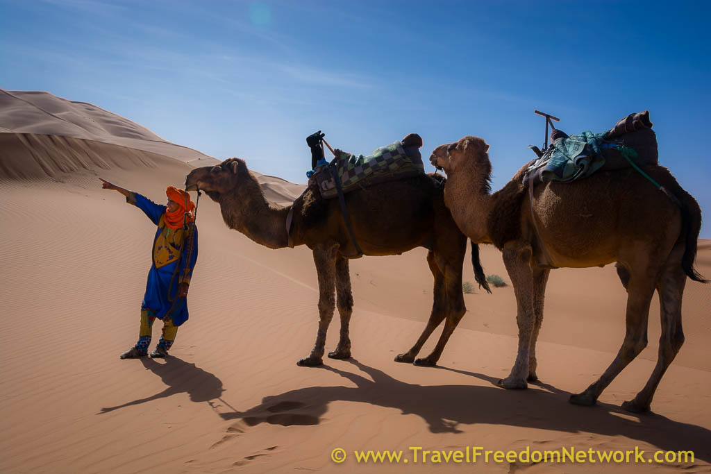 camel Trek Point